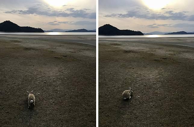 <p><b>和小兔兔一起聽海</b></p>