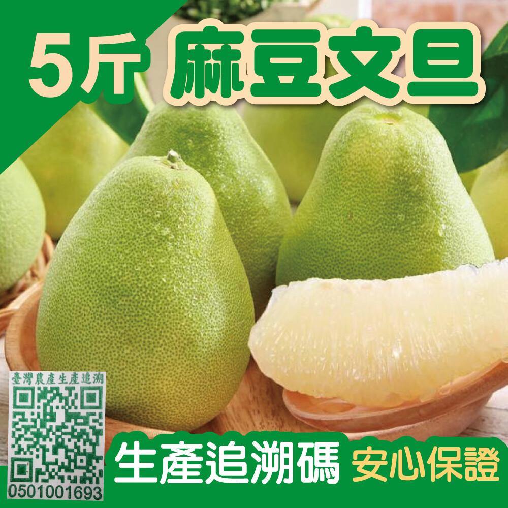 台南麻豆精選文旦5台斤/箱