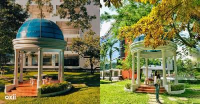 """Có một góc """"sống ảo"""" ở trường ĐH Tôn Đức Thắng, mùa hè cứ như Dubai, còn mùa thu lại như châu Âu, Hàn Quốc"""