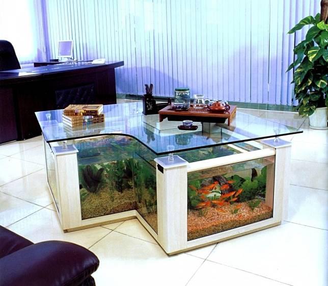 Integrated Aquarium, Menyapa Ikan Dengan Cara Unik. | Furnizing.com | LINE TODAY