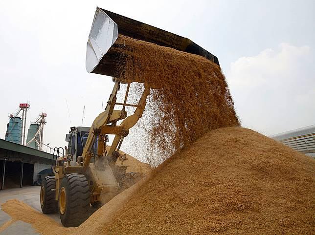 THA: Rice Price Rises Threaten Worlds Poorest
