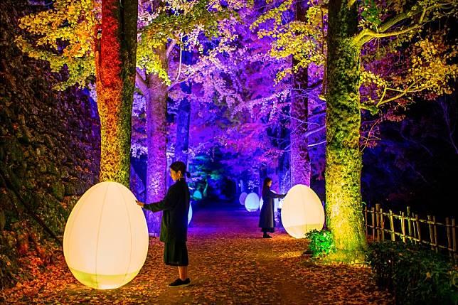 今次祭典主角是本丸及林道中的蛋型七彩燈飾和發光氣球,每當有人推動,會發出音效和改變顏色。(互聯網)