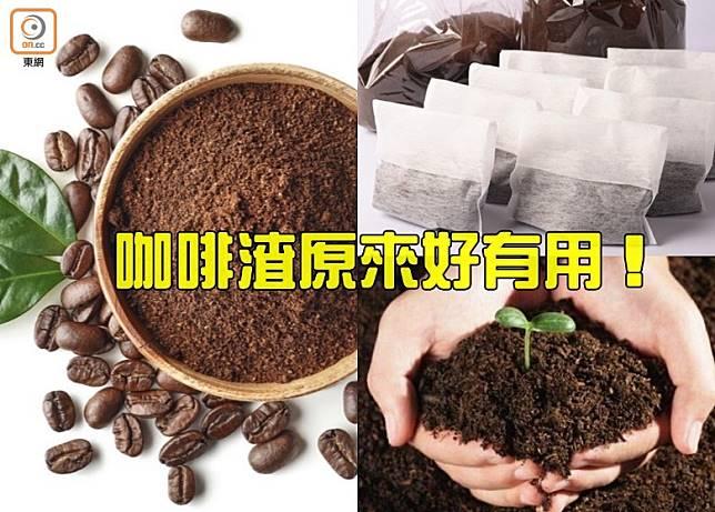 咖啡渣好有用,唔好亂嘥啦!(互聯網)