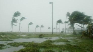 颱風來臨,讓女職員先回家,是小看她們嗎?