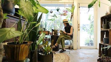 【夏日植型力II】懶惰植人篇!懶人植物不再只有多肉選擇,七款超好養葉片型植物,躺著就能美化居家