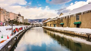 北海道真的沒有蟑螂嗎?一起解開連日本人都好奇的都市傳說