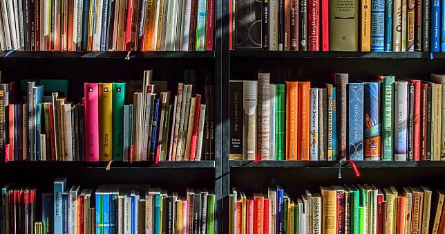 7 Tips Menjauhkan Buku dari Rayap dan Kertas yang Menguning