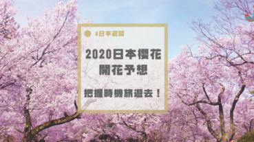 2020年初回更新「桜開花予想マップ」,今年想去日本賞櫻的人可以開始做功課了~