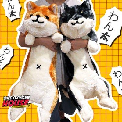日本 代購 柴犬 わん太 狗狗 抱枕 長枕 男朋友 人形長條抱枕 寵物男友 午睡抱枕 80cm