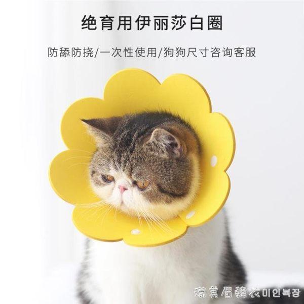 太陽花伊麗莎白圈EVA海綿超輕薄頭套貓咪脖圈防舔恥辱圈絕育專用