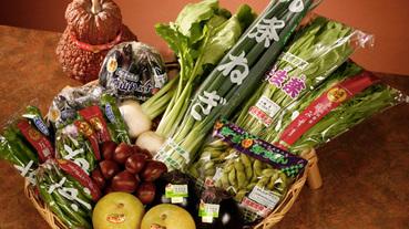 「京都的傳統蔬菜」的由來與種類?在京都不可不吃的古傳美味