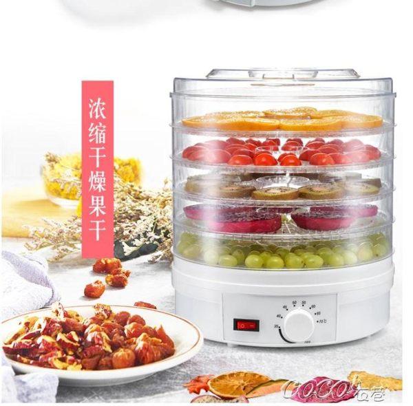 乾果機 食品烘乾機家用 水果蔬菜脫水機風乾機 乾果機乾燥機220 JD 新品