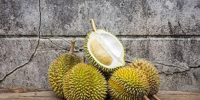 Agrowisata Durian Peluang Bisnis Durian nan Menggiurkan