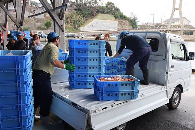 要新鮮就要高效率,間人蟹賣完即一箱箱極速運去各食肆。(劉達衡攝)