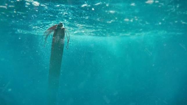 Ilustrasi ikan oarfish yang dipercaya bisa meramal gempa. [Shutterstock]