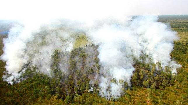 Foto udara kebakaran hutan dan lahan di Kabupaten Banjar, Kalimantan Selatan, Kamis, 29 Agustus 2019. Berdasarkan data Badan Penanggulangan Bencana Daerah (BPBD) Provinsi Kalsel hutan dan lahan yang terbakar dari bulan Januari hingga Agustus 2019 mencapai lebih dari 1.832 hektare dan masih terus meluas. ANTARA