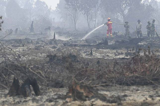Local authorities work together to put out land and forest fires in Merbau village of Bunut district, Pelalawan regency, Riau, on Tuesday.