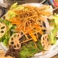 ゴボウと蓮根のパリパリサラダ - 実際訪問したユーザーが直接撮影して投稿した湯里焼肉杉野商店の写真のメニュー情報