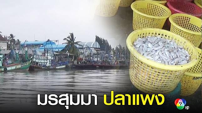 ผู้ค้าปลาใต้ โอดปลาขาดตลาด ต้องนำเข้าจากมาเลฯทำราคาพุ่ง