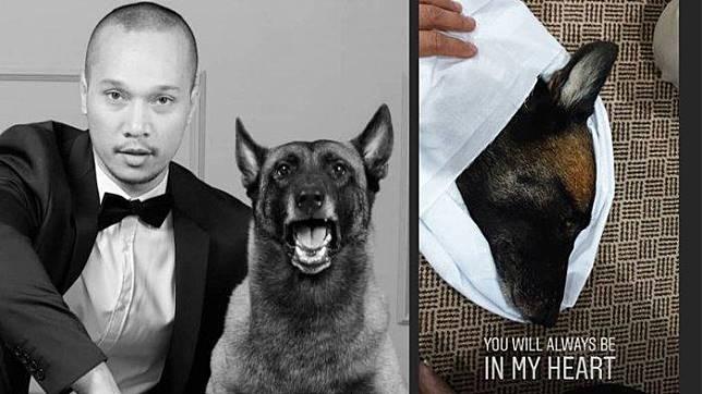 Sparta Meninggal, Bima Aryo Temani sang Anjing Sampai Menutup Mata, RIP Sparta Trending