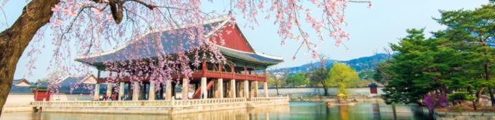 儲存裝置測試的主圖像依舊選用世界名勝,此為韓國景福宮慶會樓。