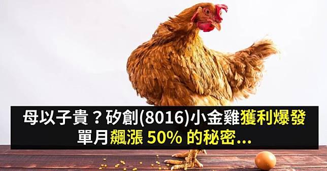 母以子貴?矽創(8016)小金雞獲利爆發,單月飆漲 50% 的秘密...