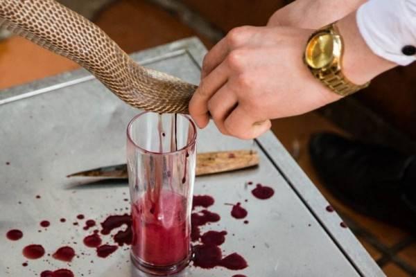 13 Kuliner yang Menggunakan Darah Hewan sebagai Bahan Masak