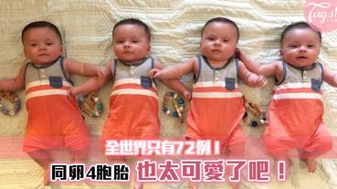 全世界只有72個案例! 同卵4胞胎~ 就像複製人,真的都一模一樣~也太可愛了吧!