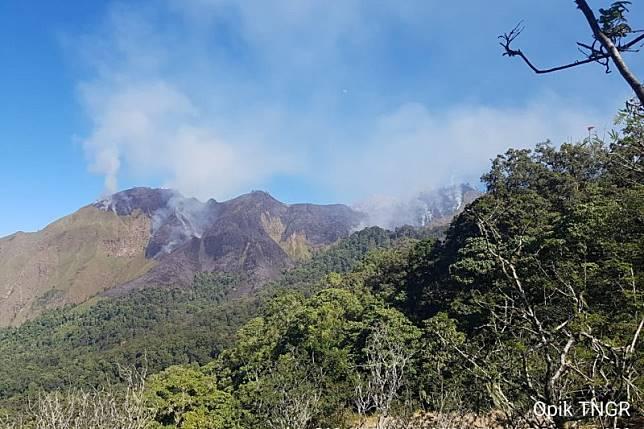Ratusan hektare kawasan Gunung Rinjani Lombok terbakar