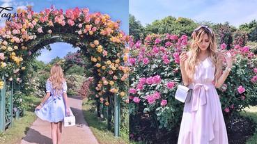 夢幻玫瑰園~在初夏盛放中,隨便拍拍都很美,少女心要爆發了!
