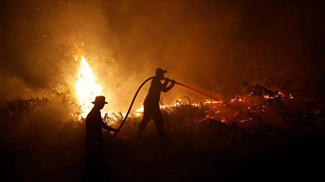 Firefighters try to extinguish forest fires at Sebangau National Park area in Palangka Raya, Central Kalimantan province, Indonesia, September 14, 2019. Some palm oil farmers have been accused of using slash-and-burn methods to clear land for planting. The palm oil industry has long been blamed for encroaching on rainforests in Borneo, endangering wildlife such as orangutans and pygmy elephants. REUTERS/Willy Kurniawan
