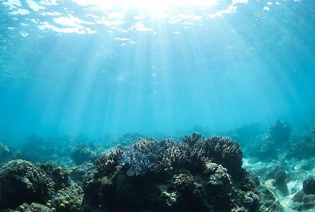 วิจัยคาด 'โลกร้อน' พ่นพิษสายพันธุ์ปลา 60% อยู่ไม่รอด