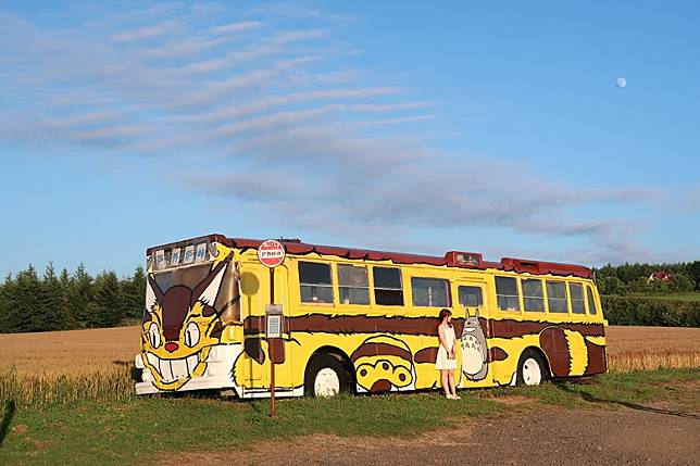 現實世界的貓巴士,由報廢巴士改換塗裝而成。(互聯網)