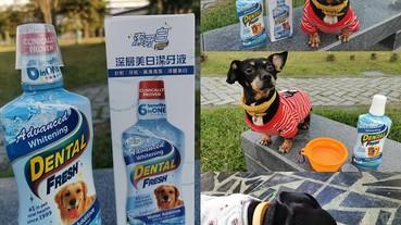 (寵物)潔牙白-毛孩健康館,潔牙白深層美白潔牙液,用喝的免刷牙,平時幫助潔牙維護牙齒牙齦健康,貓狗皆可方便使用