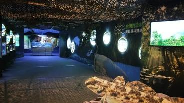 台灣人必看!全台首次展出 你認識河口魚類嗎?海科館「臺灣濕地魚類生態特展」讓你更懂台灣!