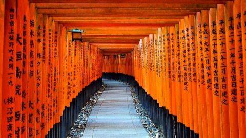 Ingin Liburan ke Jepang  5 Hal Ini Akan Membantu 7881bd7bcf