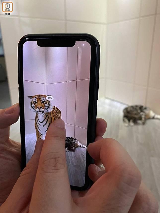 Step 05:若動物顯示比例太大,可以雙指縮放調校大細,也可以拖動到不同位置。(互聯網)