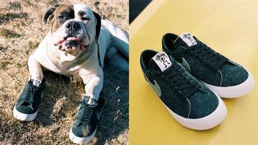 新聞分享 / 傳奇滑手親自噴漆改造成豹紋麂皮鞋身 Stüssy x NIKE SB 聯名系列發售消息
