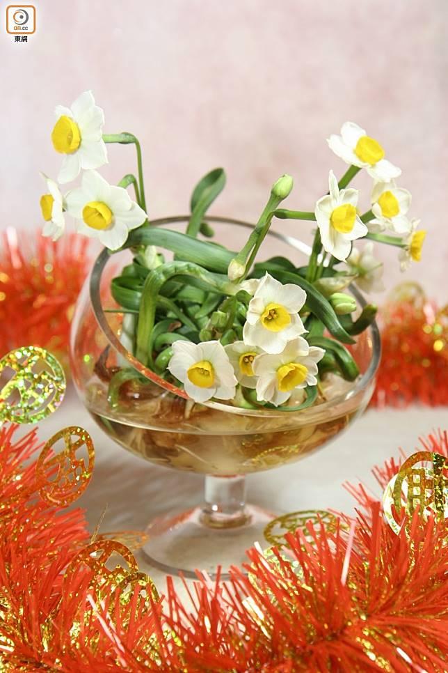農曆新年其中一個習俗就是買年花,除了粉飾家居之外,也會招來好運氣,例如桃花可以帶旺人緣、金桔代表吉祥、水仙帶來財富,銀柳則有銀有樓,意頭十足。(資料圖片)