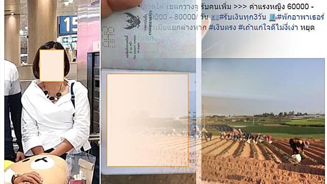 อึ้งคนไทยแดนโสม โดดหนีทัวร์นับแสน ตกอับแห่ขายตัวแลกเงิน
