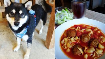 台北柴犬餐廳!【Caviar café+brunch 魚子醬咖啡】輕食健康好選擇!女性最愛的咖啡廳