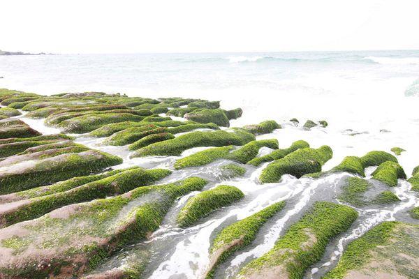 金山老街鴨肉石門老梅綠石槽台北北海岸一日遊