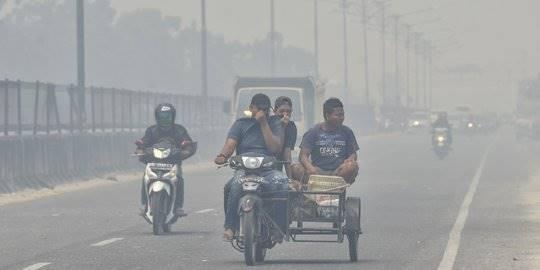 Kabut Asap Pemkot Pekanbaru Izinkan Pns Hamil Bekerja Dari
