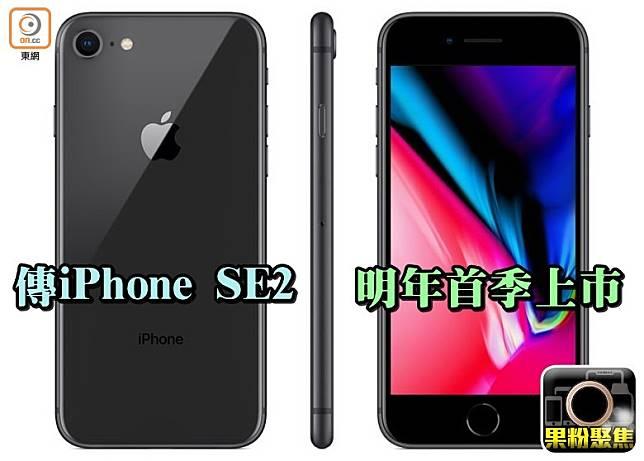有傳iPhone SE2將於明年首季推出,定價僅為399美元起。(互聯網)