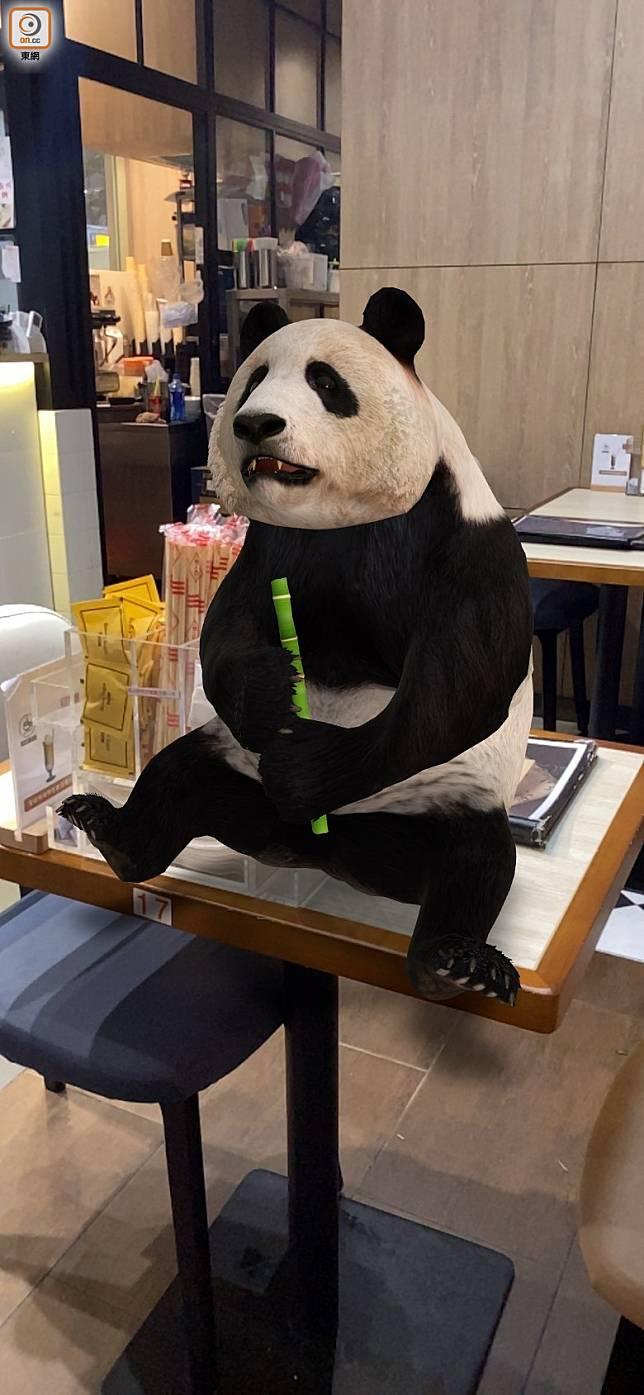 熊貓都要開餐,人食飯佢食竹。(互聯網)