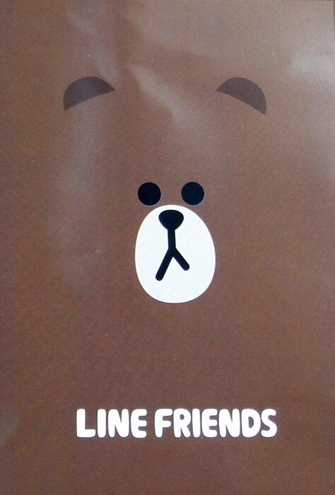 【UNIPRO】LINE FRIENDS 熊大 莎莉 毯子 刷毛毯 冷氣毯 野餐墊 薄毯 小被毯 BABY毯