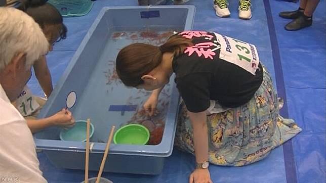 ▲日本一名女高三生三宅莉緒靠撈金魚「一技入學」錄取大學。(圖/翻攝自 NHK )