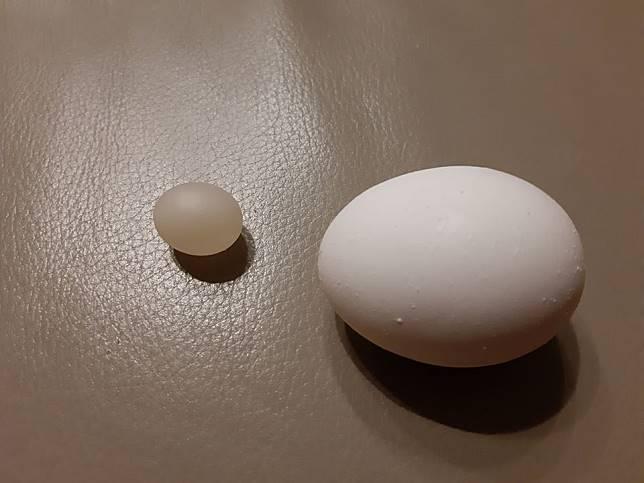 ▲蛋中蛋的奇觀引發熱議。(圖/翻攝自爆料公社)