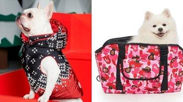 狗奴才們快搶!Moncler 羽絨衣、BAPE 迷彩,這些潮又可愛的「愛寵系列」怎麼可以錯過!