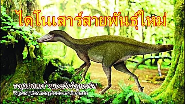 วายุแรปเตอร์ หนองบัวลำภูเอนซิส ไดโนเสาร์กินเนื้อ พันธุ์ใหม่ของโลก